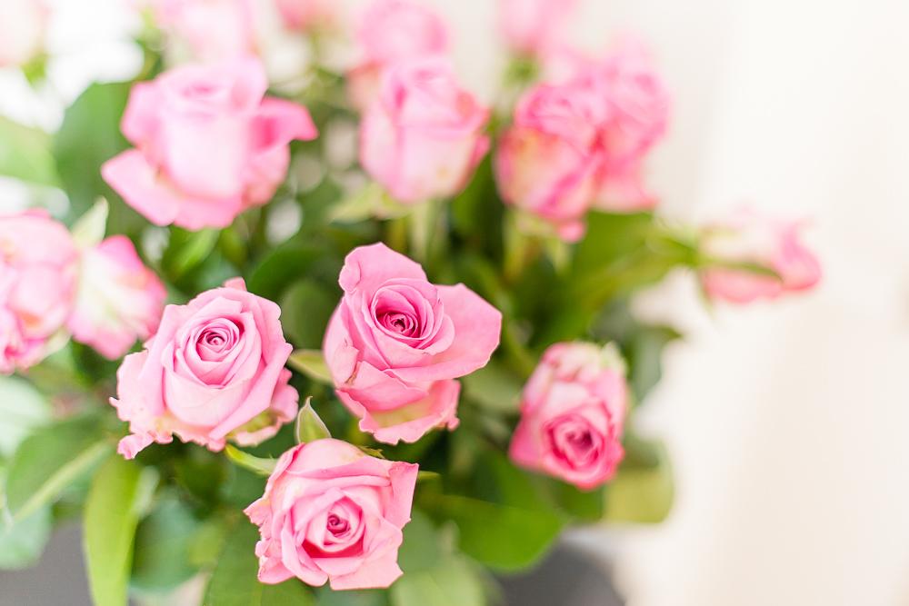 róża home staging