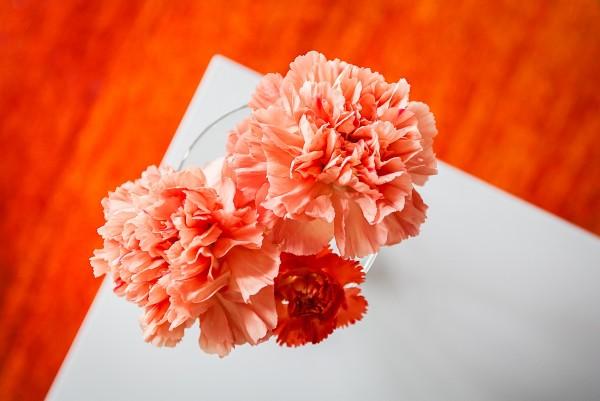wiosna, wiosenny wystrój wnętrz, kwiaty, pomarańczowy